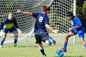 Soccer_Goal_small